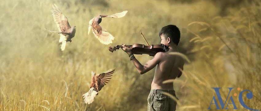 Violoniste faisant danser les oiseaux